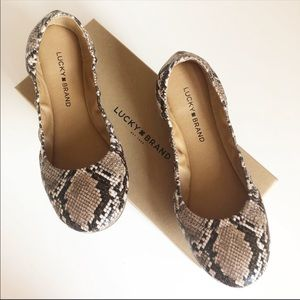 NEW in BOX LUCKY BRAND Erin Snakeskin Ballet Flats